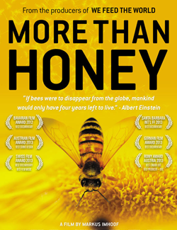 More Than Honey Co-presented by Tucson Waldorf School and The Loft Cinema Tucson